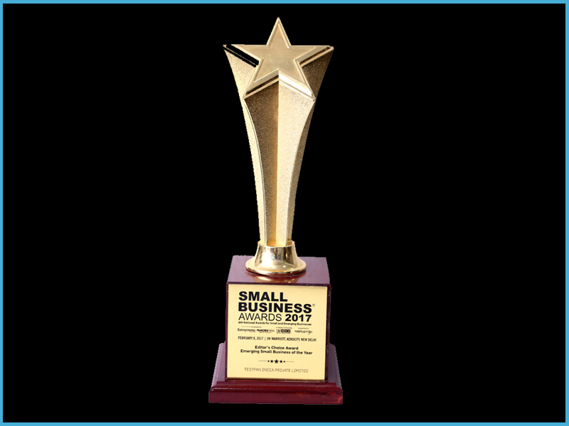 Editor's Choice Small Business Award by Franchies India-2017